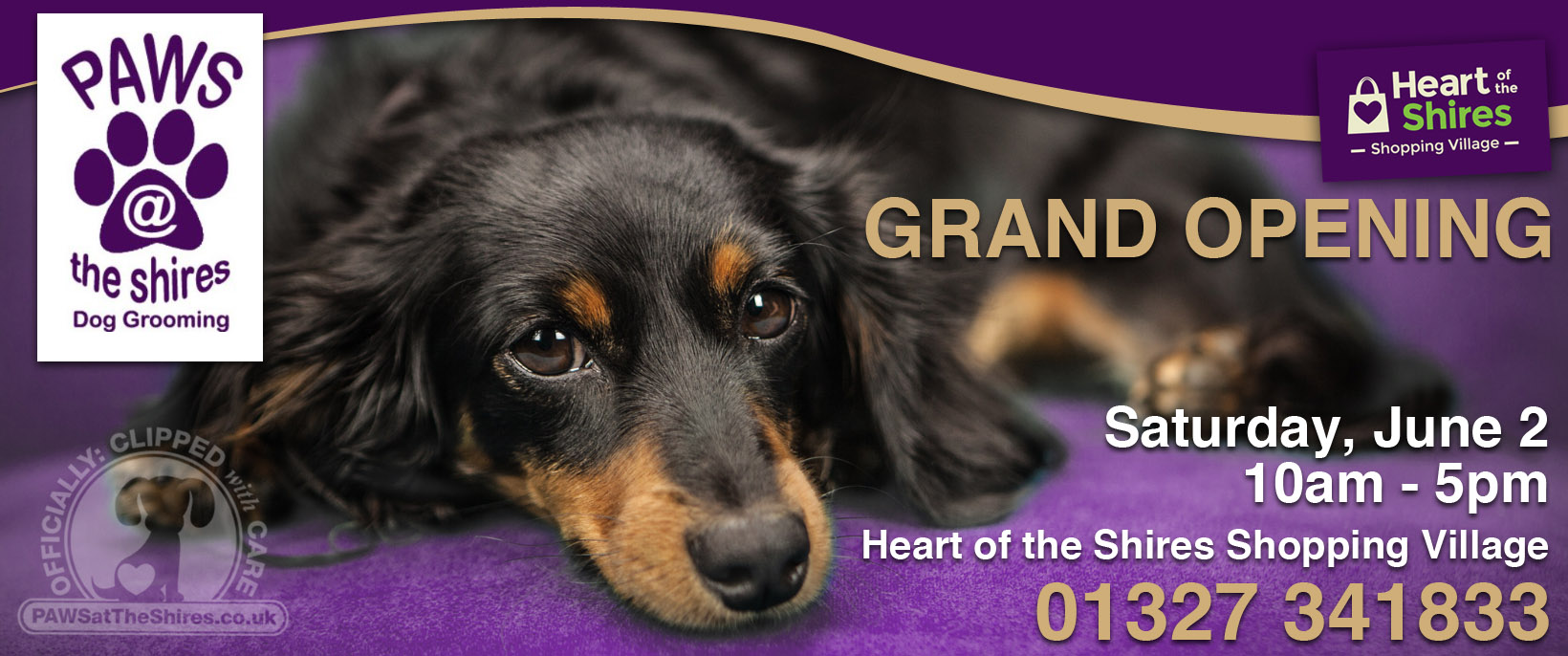 grand opening paws at the shires